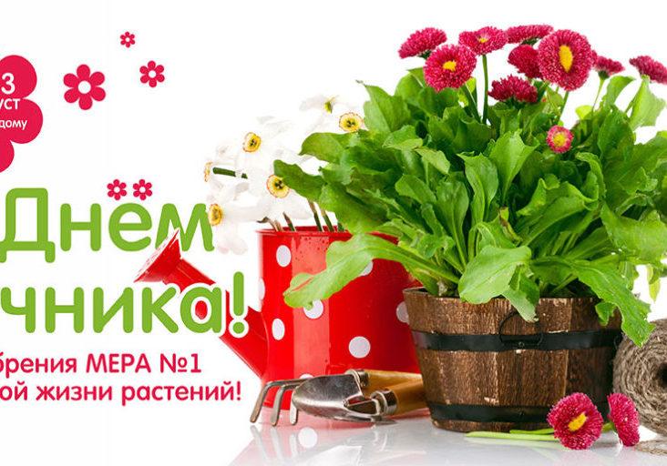 Агромера_открытка_день-дачника